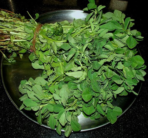 Fenugreek leaves (Menthi kura) | Fenugreek leaves (Menthi ...