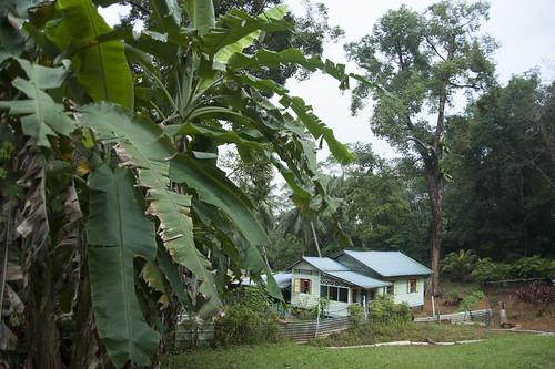 Kampung house  on Pulau Ubin