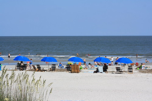 Disney Hilton Head Resort Room Rates Aug