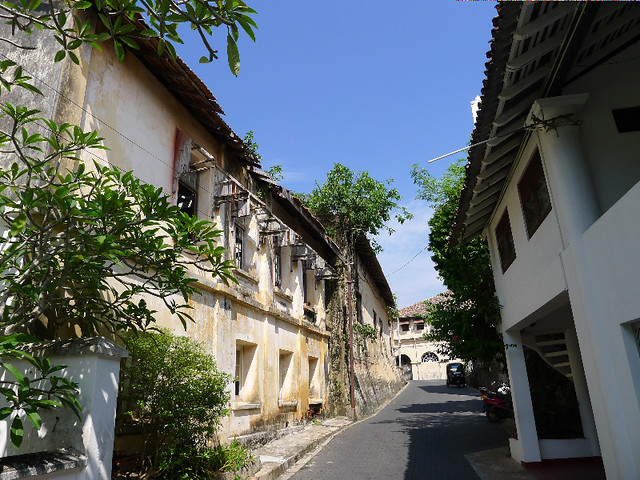 323-Galle