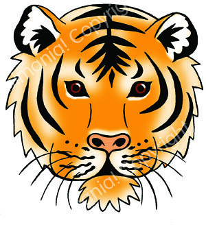 Tiger colour  wwwanimaniaorguk More artwork to see at w  Flickr