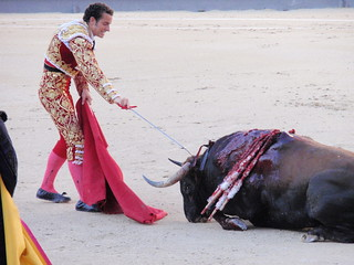 Bullfighting in Madrid | by George M. Groutas