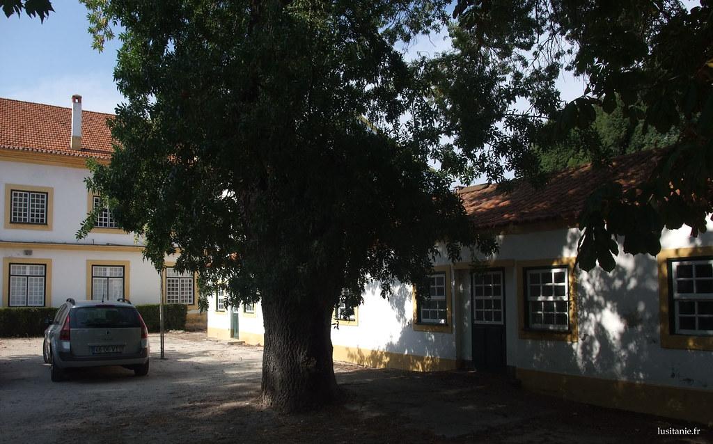 Les locaux sont très biens preservés, dans le plus pur style architectural portugais