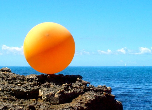Mr Orange at the seaside | by Valentina*
