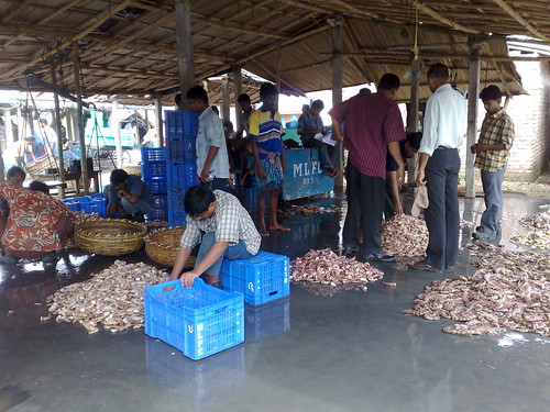 Whole Sale Fish Market Digha Santanu Mukherjee Flickr
