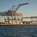 Bay bridge bypass: Oakland cranes