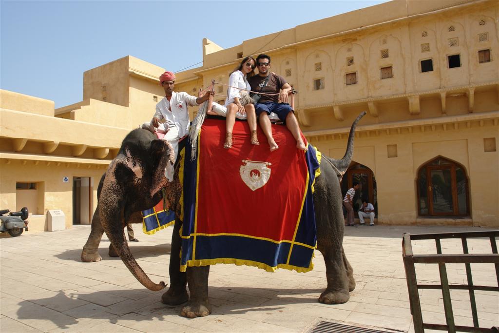 Qué ver en Jaipur: Ascenso al Fuerte Amber, he de añadir, que me arrepiento de haber subido en Elefante qué ver en jaipur - 4143454372 37b4224dff o - Qué ver en Jaipur, India