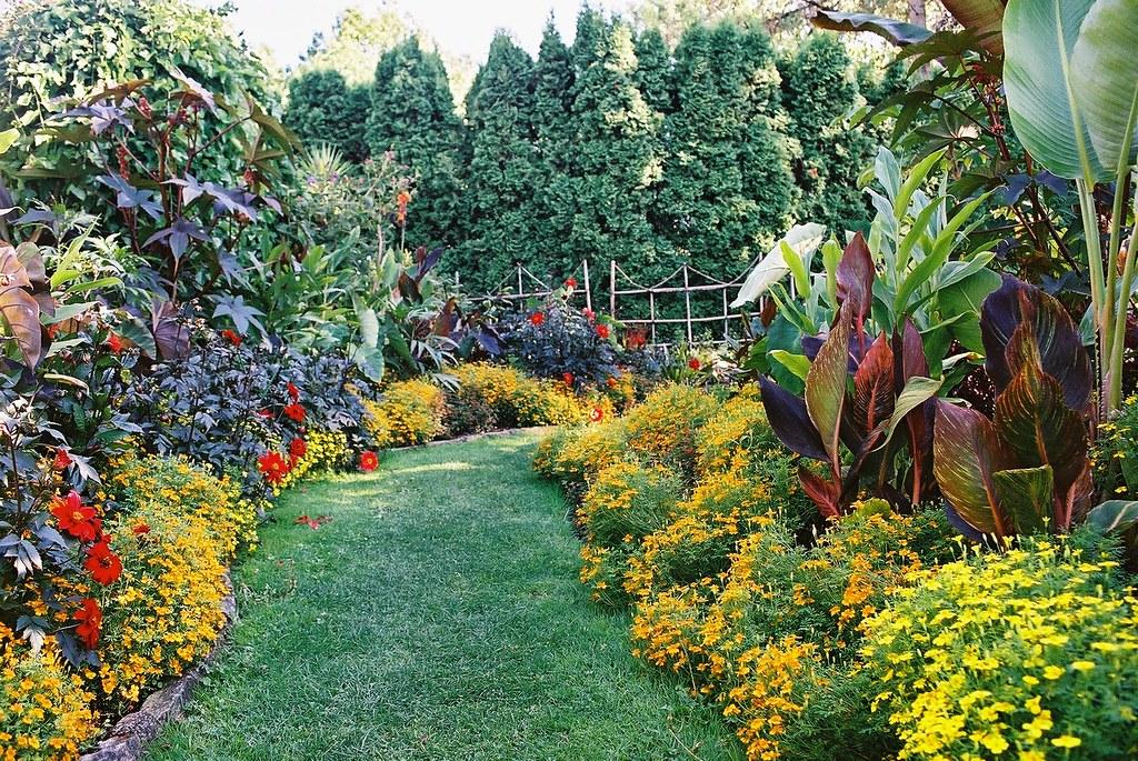 ... Tropical Border | By VanDusen Botanical Garden Official Photostream