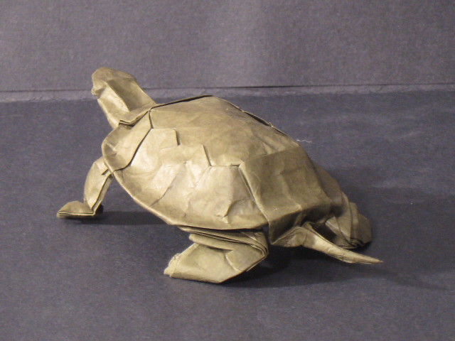 Origami Turtle Lang Western Pond Turtle Designed By Ro Flickr