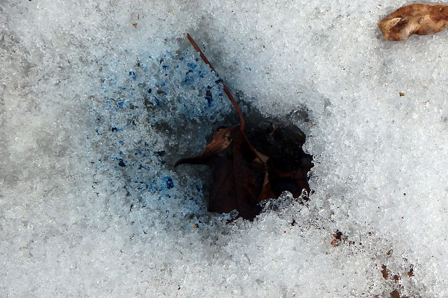 oval-shaped dark blue snow next to a hole with a leaf