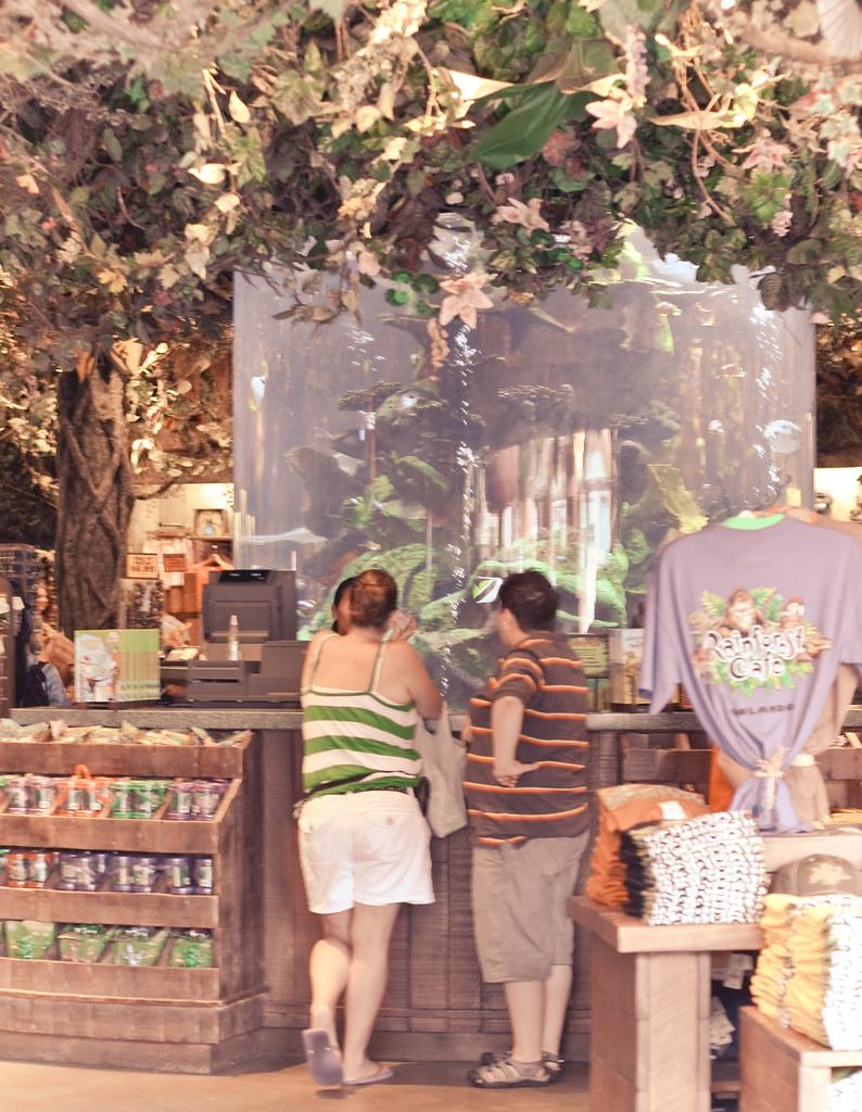 Rainforest cafe orlando downtown disney coupons