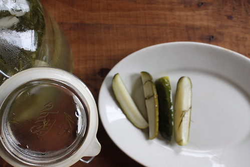 pickles | by Amy Merrick