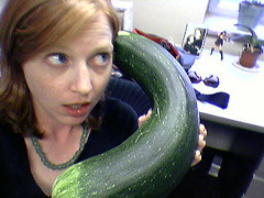 I could get a lot more work done if this zucchini would stop ringing | by peppercam