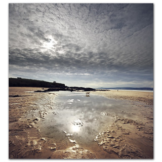 Altocumulus reflections at Gwithian Sands. Have you heard the one about the dog who went for a walk and forgot to take his owner? | by s0ulsurfing