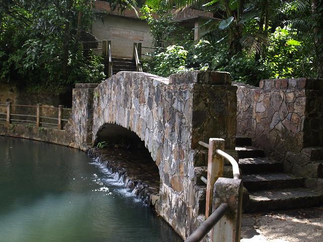 Baño Grande El Yunque:Recent Photos The Commons Galleries World Map App Garden Camera Finder