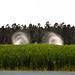 Elberta AL, crop dusting now that's low!!