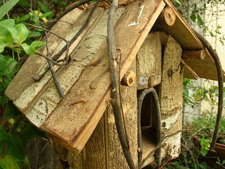 Bird House | by boisebluebird