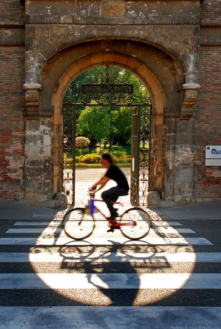 Toulouse jardin des plantes toulouse jardin des plantes flickr - Toulouse jardin des plantes ...
