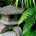 Lamorran House Gardens, Cornwall, UK | A Cornish coastal garden with sub-tropical and Japanese garden features (5 of 11)