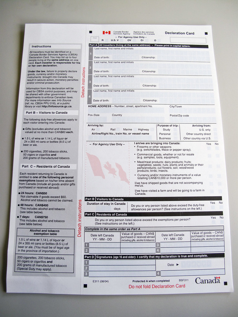 indian customs declaration form pdf