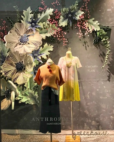 Anthropologie Window Quilling - Burlington, Massachusetts