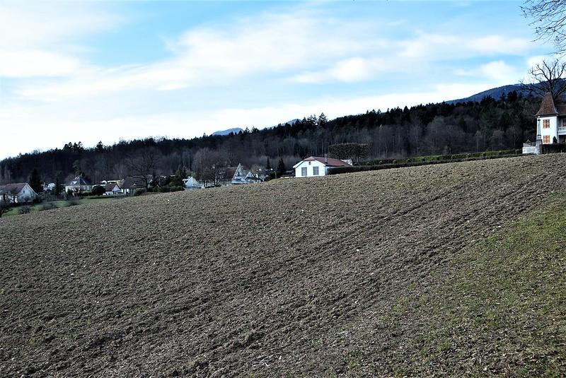Feldbrunnen village 23.02 (29)
