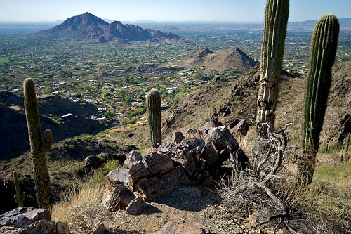 Phoenix Mountain Preserve, Phoenix Arizona | by dbostrom