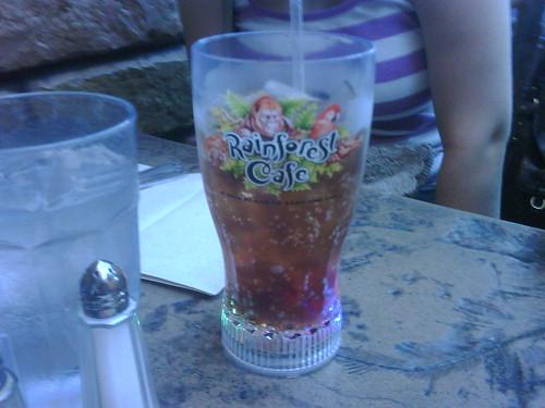 Rainforest Cafe Light Up Cup