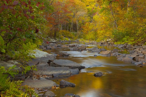 Fall Creek | by Archie177