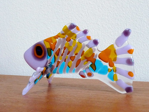 Glass Fish | by volvodadfast