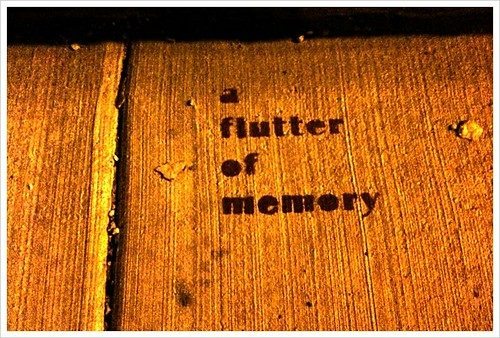 A flutter of memories | by swanksalot