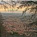 Maddaloni, my City