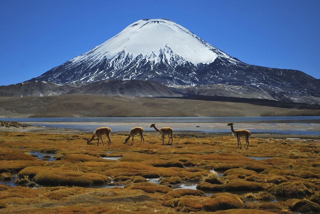 El clima en bolivia 1 - 2 1