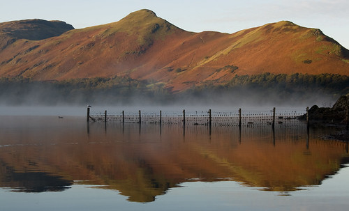 Cat Bells | by JonTait2002