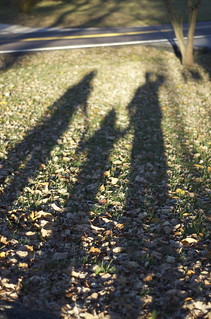 Shadow Family | by Chris Koerner