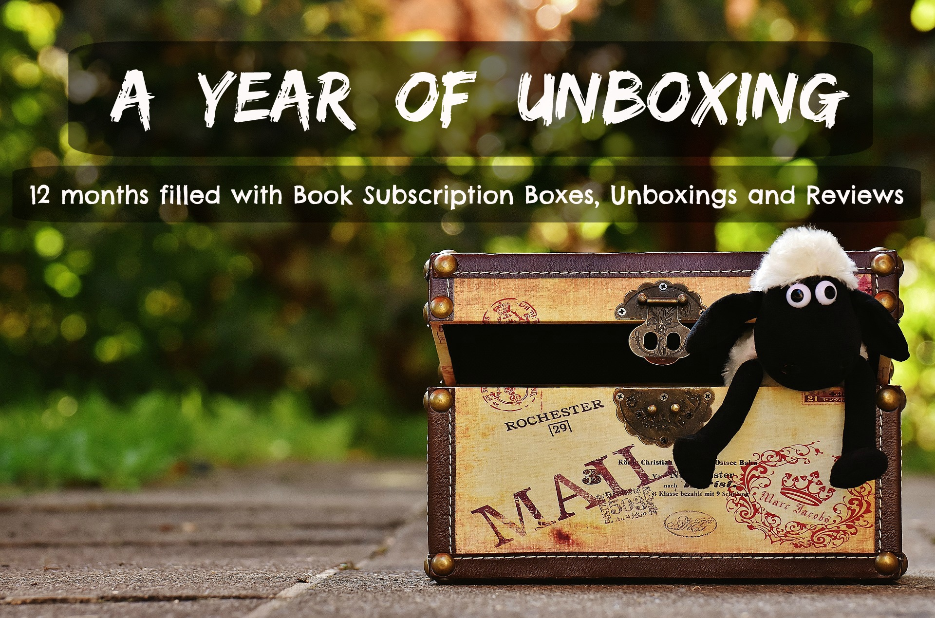 A Year of Unboxing Book Subscription Boxes