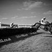 Horse Racing B&W