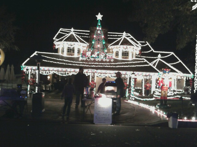 Thoroughbred Christmas Tree Lights In Alta Loma California