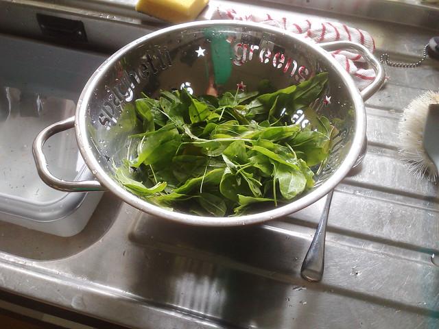 Sorrel Vegetable Recipe
