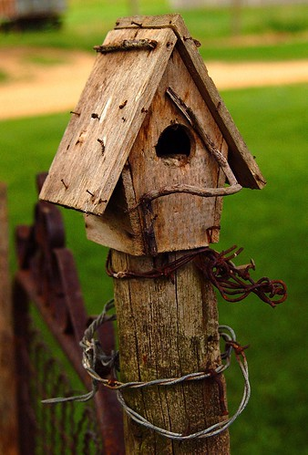 Iowa birdhouse mike woodfin flickr for Different types of birdhouses