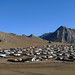 Cecerleg / Цецерлег (Mongolia) - Town and Mountains