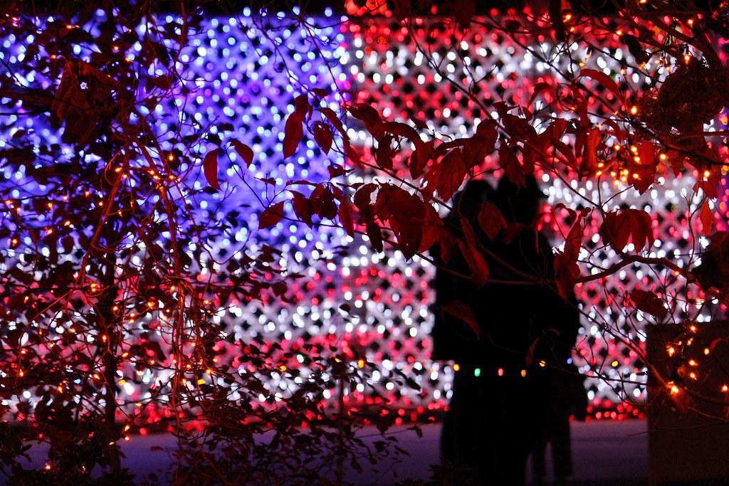 american flag made of christmas lights by carlisle_jones