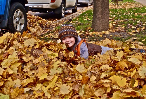 KELLER LOVES PLAYING IN THE LEAVES | by JOPHIELsmiles