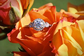Melissa Engagement Ring