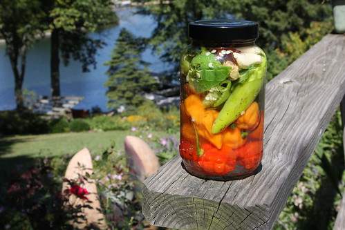 Pickled Peppers: The final jar | by Indiana Public Media