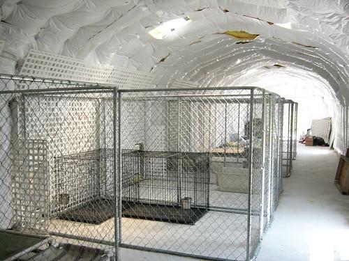 Steel Dog Kennels Heavy Duty