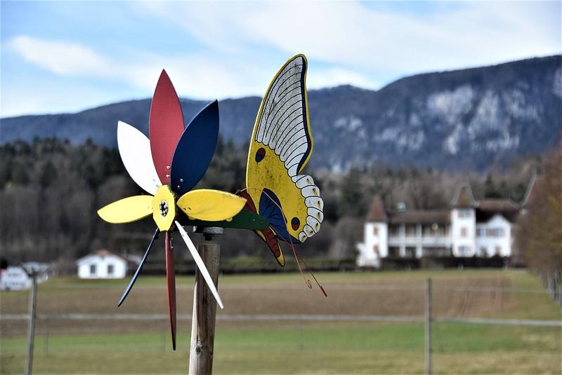 Feldbrunnen village 23.02 (7)