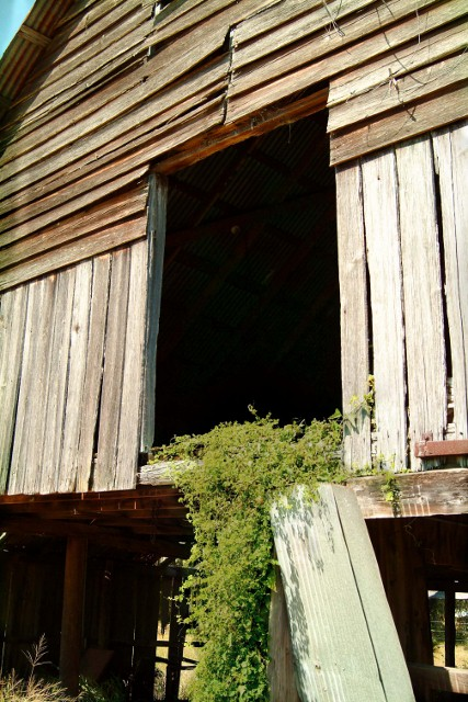 Castalia Fl Barn Loft Door Old Barn Loft Door Near The