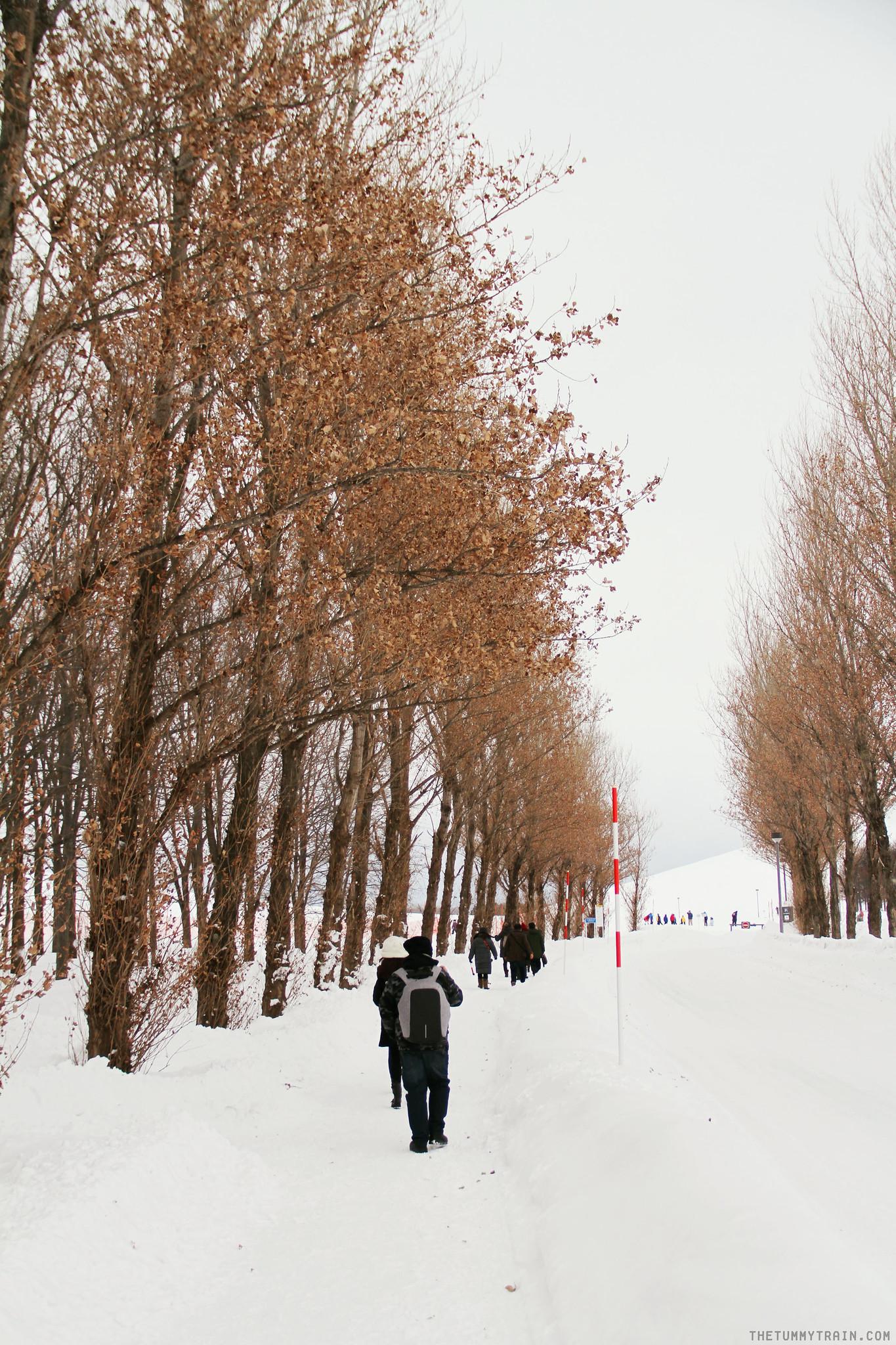 32875889666 cf0e840b6b k - Sapporo Travel Diary 2017: Having a grand old time at Moerenuma Park