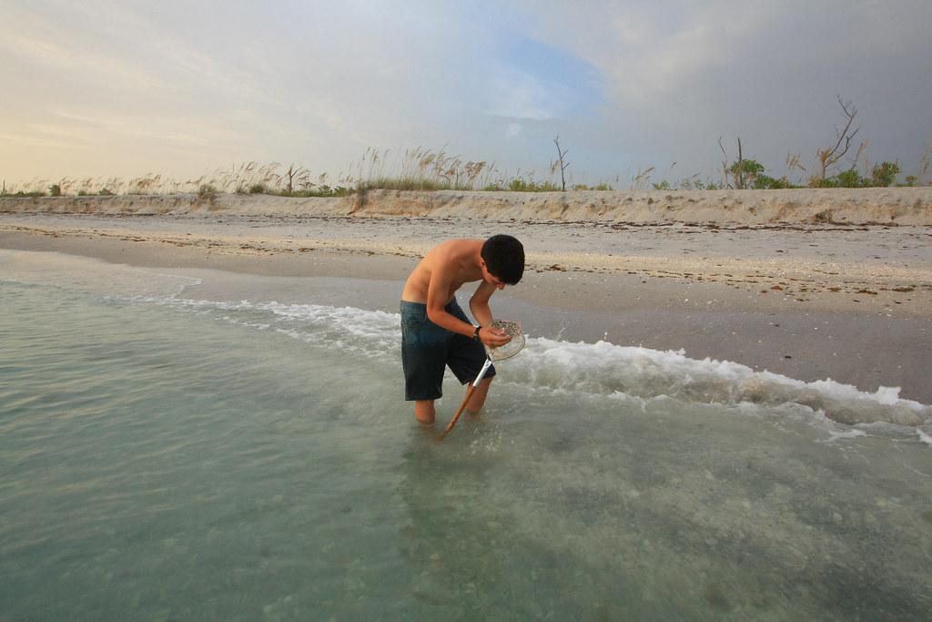 stump pass beach state park, manasota key, gulf of mexico ...